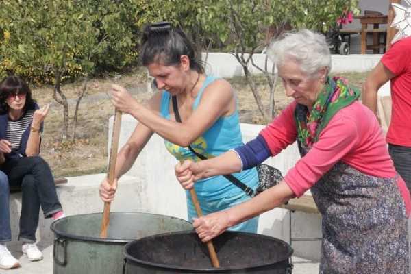 «Лютеницатерапия» поможет восстановить часовню в селе Пожарево