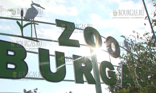 Бургасский зоопарк временно закрыт для посетителей