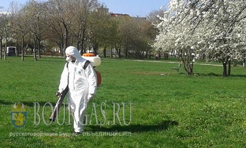 Жителей Бургаса массово атакуют комары