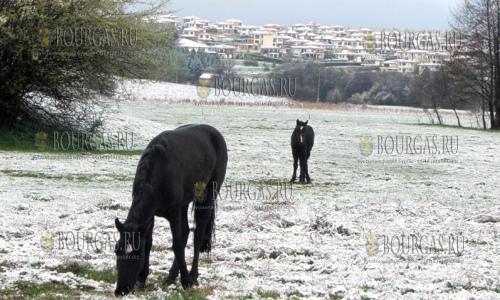 В Болгарию на несколько дней вернулась зима