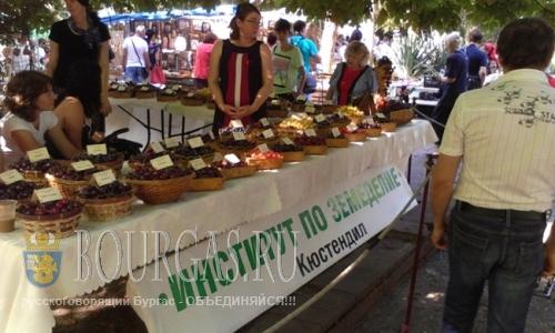 Фестиваль черешни прошел в Кюстендиле