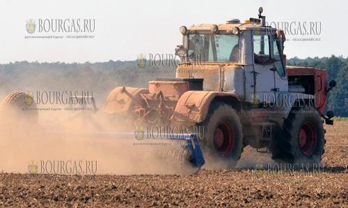 Цены на сельскохозяйственную землю в Болгарии постоянно растут