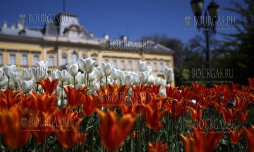 Апрель в Болгарии будет теплым и сухим