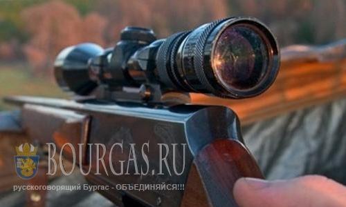 В Болгарии браконьер убил чрезвычайно редко-встречающуюся птицу