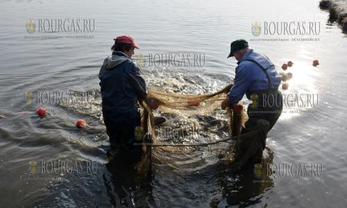 На озере «Ястребино» собрали более 500 метров браконьерских сетей