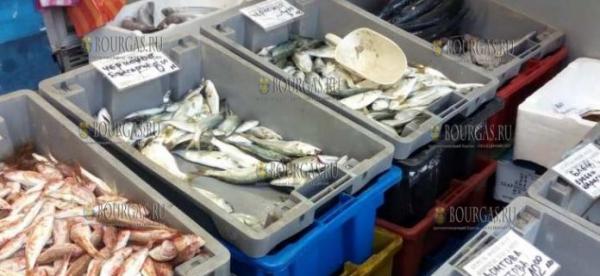 В Бургасе пройдут массовые проверки качества продаваемой рыбы