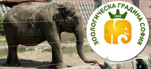 Эмблеме зоопарка в Софии исполнилось 57 лет