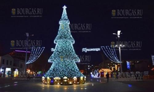 В Бургасе к Рождеству установят сразу три большие елки