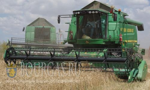 Болгария экспортирует из страны зерновые и масличные культур