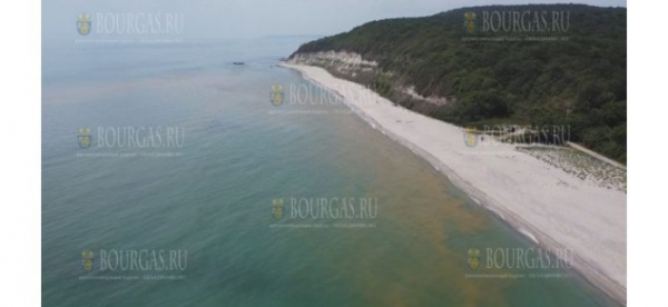 Вода на одном из пляжей возле Варны неожиданно пожелтела
