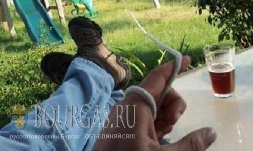 200 000 молодых болгар не хотят ни учиться, ни работать