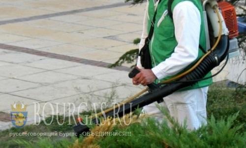 В Бургасе уже начали бороться клещами и комарами