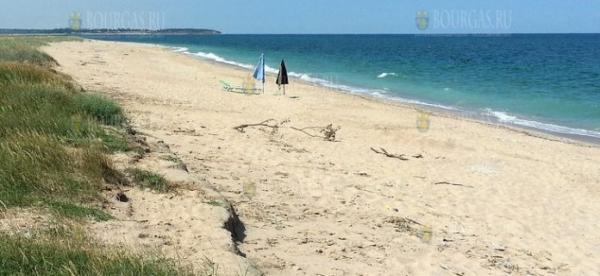 В Черном море у селения Дуранкулак в Болгарии обнаружены мертвые козы