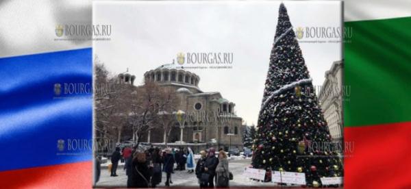 Правительство Москвы подарило Софии 13-метровую Рождественскую ель