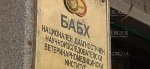 Сотрудники БАБХ в Болгарии снова обнаружили мясо зараженной сальмонеллой