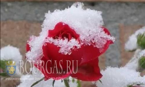 Первого снега в Болгарии пока не ожидают