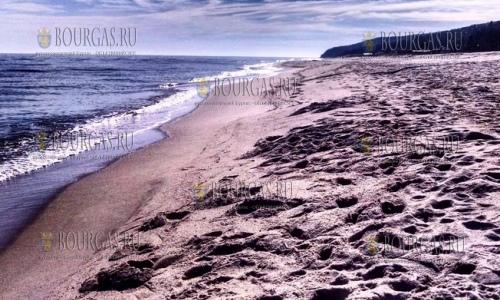 Пляж «Золотые Пески» вернулся в список пляжей «Голубой флаг»