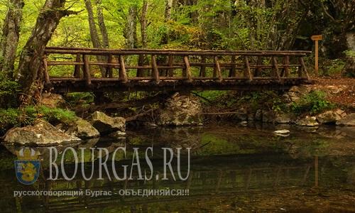 Странджа Болгария — Ищут волонтеров и спонсоров