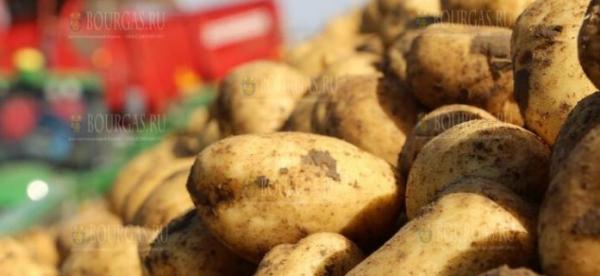 Картофель из Германии в Болгарии продают как болгарский?