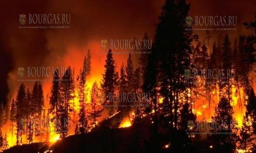 С пожаром в Хасковской области в Болгарии пока справиться не удалось