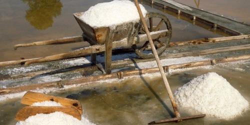 Уникальное Соленое озеро в Поморие может исчезнуть
