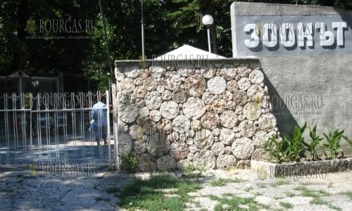 В зоопарке в Варны начался ремонт