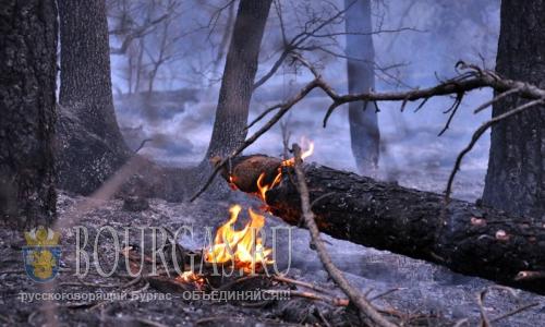 В 8-х областях Болгарии Красный код пожароопасности
