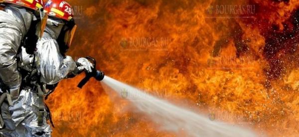Пожарные в Болгарии спасли целую пасеку от пожара