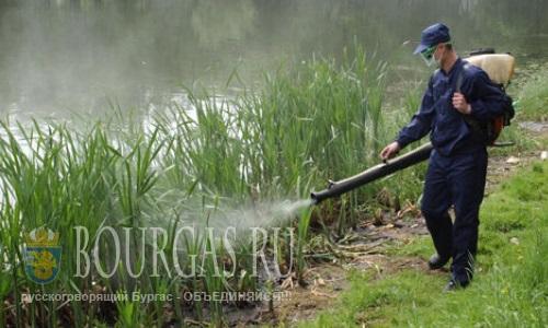 В Бургасе продолжают бороться с комарами
