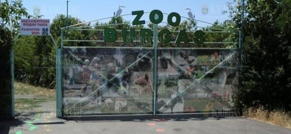 Зоопарк Бургаса объявил о работе без выходных и перерывов на обед