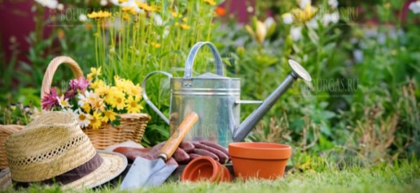 В Болгарии сегодня празднуют День садовода